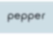 Pepper 社会貢献プログラム2