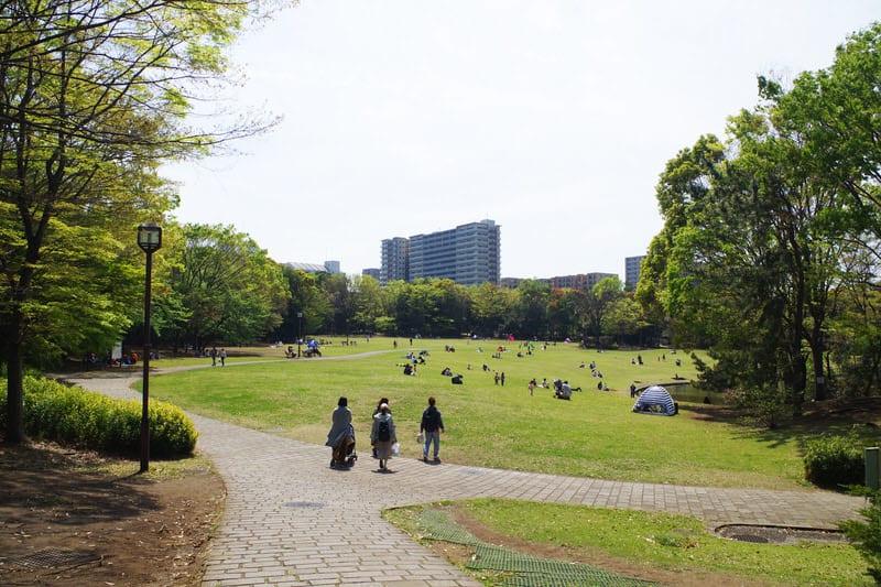 地域住民の憩いの場「多摩中央公園」