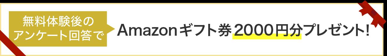 Amazonギフト券2000円分プレゼント中!